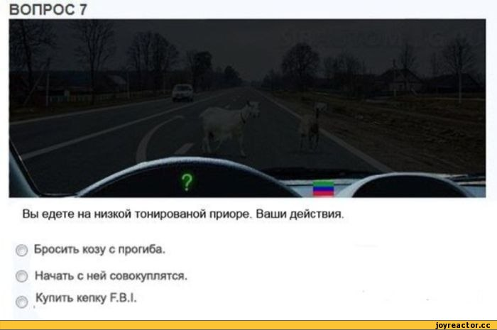 Комиксы-хач-овца-тонировка-300397