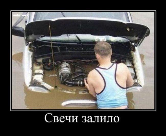 auto_demotivators_17